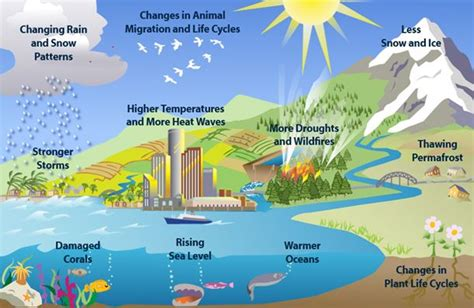 global warming diagram diagram of climate change effects climate change