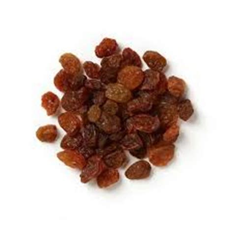 dogs raisins can dogs eat sultanas about doggies