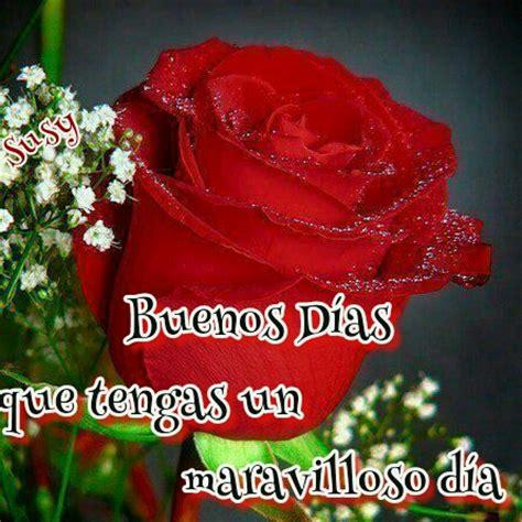imagenes de buenos dias con rosas buenos dias con rosas en sabado imagui
