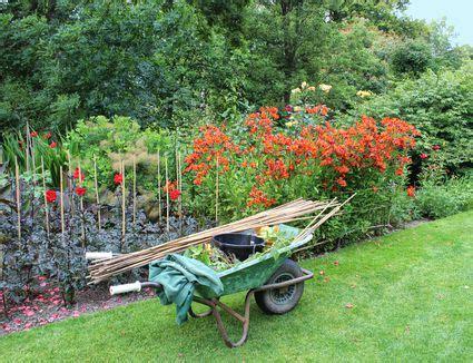 regional garden guides regional gardening guide for february