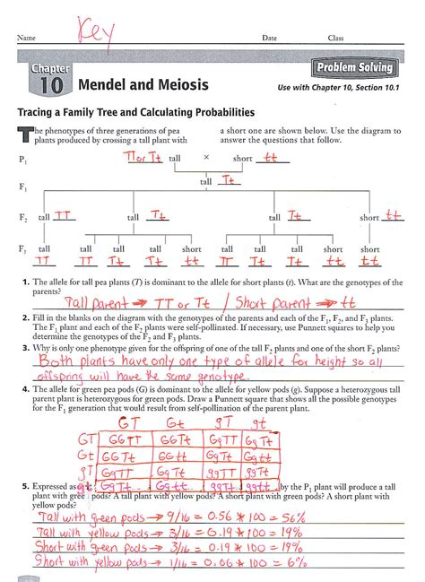 section 10 1 review dna answers uncategorized 9th grade biology worksheets