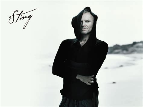 sting sting images sting hd wallpaper and background photos 59366