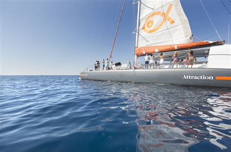 catamaran barcelona palma catamaran attraction barcos eventos organizaci 243 n