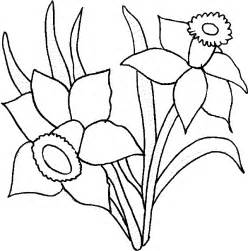 daffodil color flower coloring pages daffodil coloring page flower