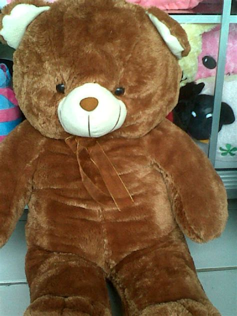 Boneka Beruang Besar Lucu 1 boneka beruang besar dan lucu boneka lucu toko boneka jual boneka murah