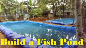 fish pond in backyard how to build a fish pond fish farming in backyard