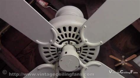 Cat In Ceiling Fan by Cat Ceiling Fan Ectocon