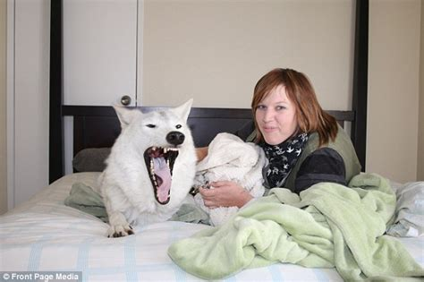 how to get her in bed california s kimmi kraus sleeps with wolves daily mail online