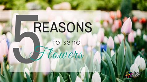8 Reasons To Send Flowers by Bloomin Everything You Want To About Flowers