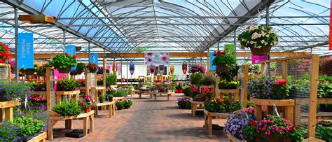 Greenhouse Garden Center by Garden Centre Johnston S Greenhouse