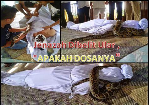tutorial sholat dhuhur gempar jenazah dibelit ular dalam kain kafan media