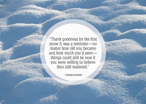 quotes about snow and ice quotesgram