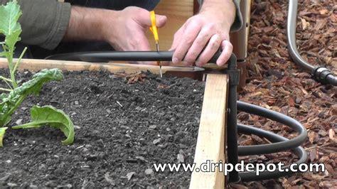install  drip irrigation system  raised beds