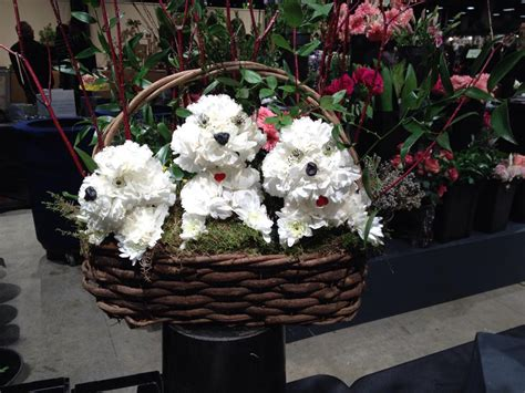 time out the boston flower almost time for the boston flower show real estate for