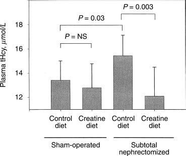 s adenosylmethionine creatine creatine supplementation decreases homocysteine in an