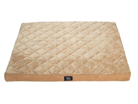 serta quilted pillow top dog bed serta pet beds serta extra large pet beds 2 styles home woot