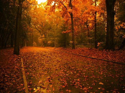imagenes de otoño invierno fondos de oto 241 o fondos de pantalla de oto 241 o oto 241 o