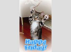 Happy Friday Picture #75325302 | Blingee.com Free Digital Clip Art Maker