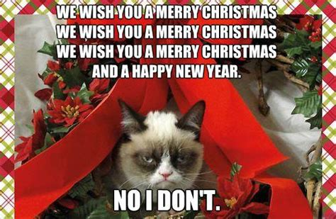 Merry Christmas Cat Meme - we wish you an annoying chistmas points in case
