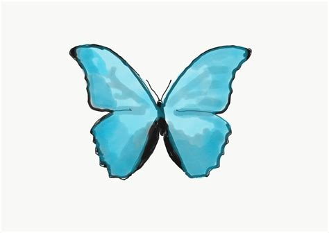 The Butterfly Effect the butterfly effect everything you need to about