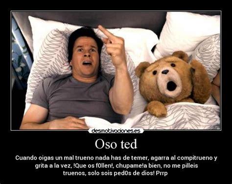 imagenes groseras del oso ted oso ted desmotivaciones
