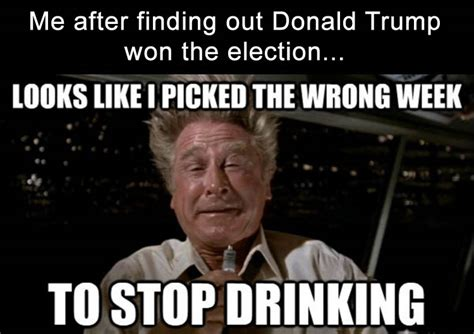 Trump Won Memes - the internet reacts to donald trump winning with funny memes 19 pics