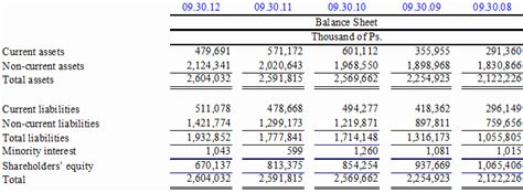 Interim Balance Sheet Template by Information From The Company S Unaudited Consolidated