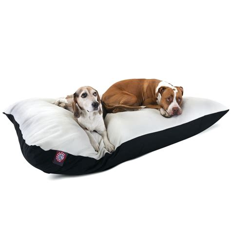 dog bed sores dog bed sores 28 images bed sores on dogs restate co