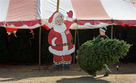 papa noel has been selling christmas trees in austin for