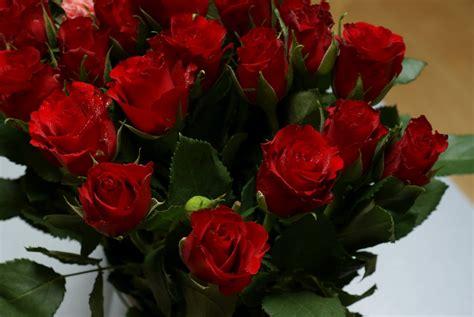 imagenes de rosas rojas para facebook ramo de rosas para facebook fotografias y fotos para