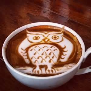 owl barn owl latte art collection