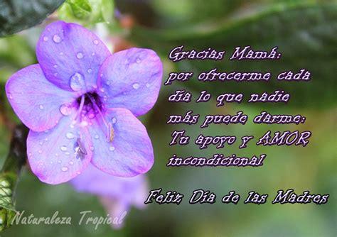 versos para mama versos por amor versos para mama versos por amor newhairstylesformen2014 com