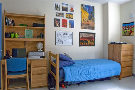 dorm 101 must haves for dorm room organization college
