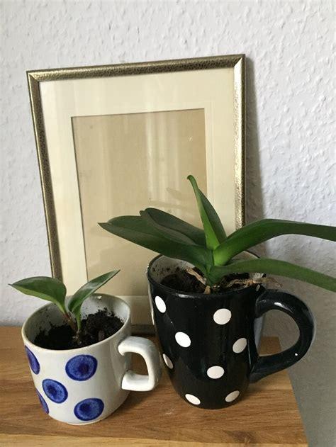 alte tassen diy upcycling altes geschirr vase tasse teller