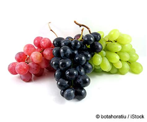 imagenes de uvas kawaii beneficios de la uvas mercola com