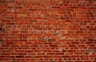 Bamboo Wall Mural red brick wall wallpaper wall mural wallsauce australia