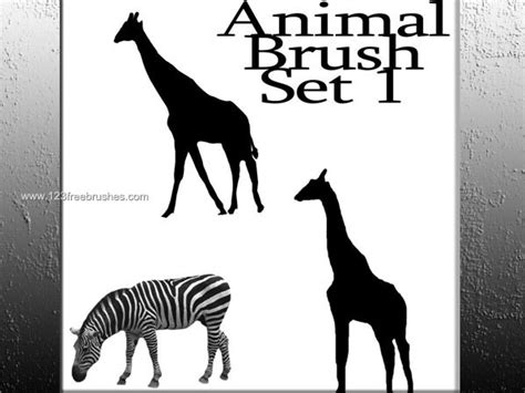 zebra pattern photoshop brushes animals photoshop brushes camel rhinoceros wolf