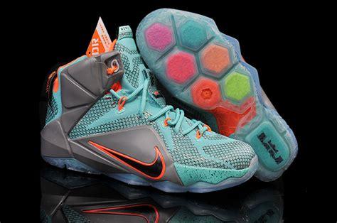 2nd Lebron Size 42 size 6 5 lebron shoes traffic school