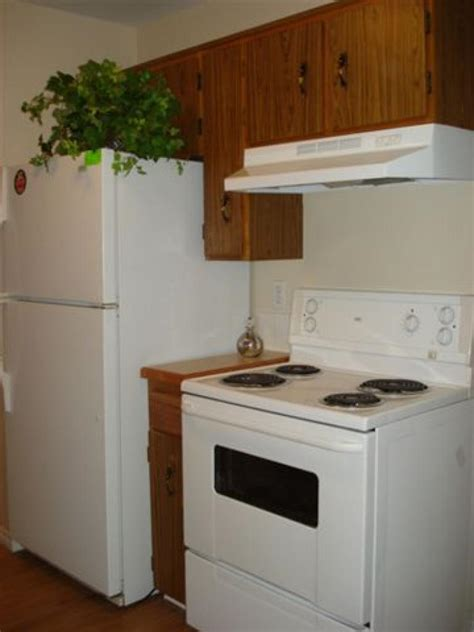 rent kitchen appliances fort nelson apartment photos and files gallery rentboard