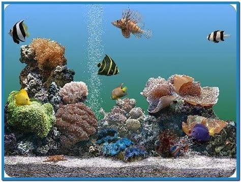 wallpaper aquarium mac 3d marine aquarium screensaver mac download free