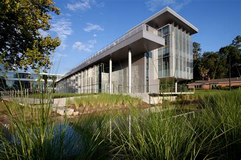 www architecture com gallery of university of florida clinical translational
