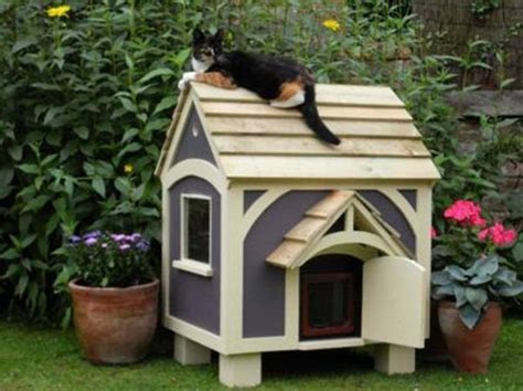 outdoor cat houses plans 25 best ideas about outdoor cat houses on pinterest outdoor cats outdoor cat