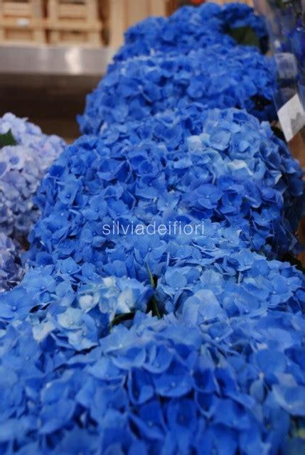 fior di mare fiori per un matrimonio al mare silviadeifiori