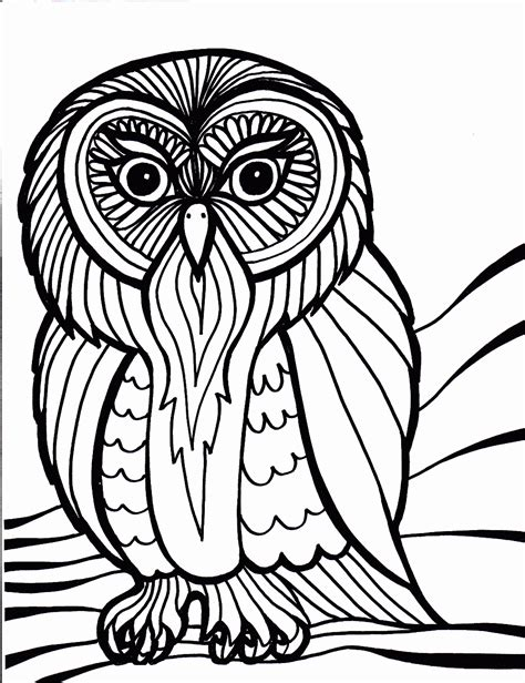 free print of coloring pages of birds bird coloring pages coloring pages to print