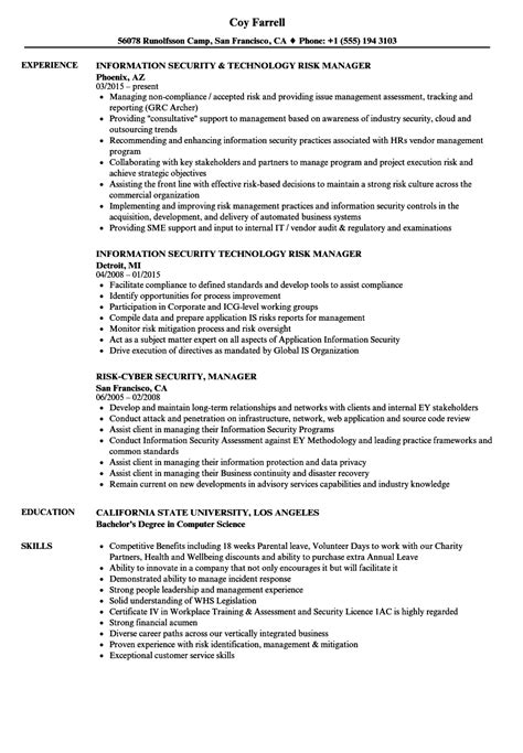 security manager resume format risk security manager resume sles velvet
