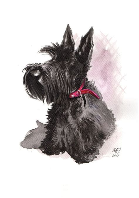 scottish terrier tattoo design 261 best scottie dogs scottish terriers arte de