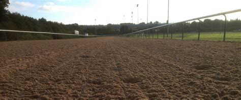 All Weather Surfaces For Horses leisure ride all weather racing surfaces wolverhton