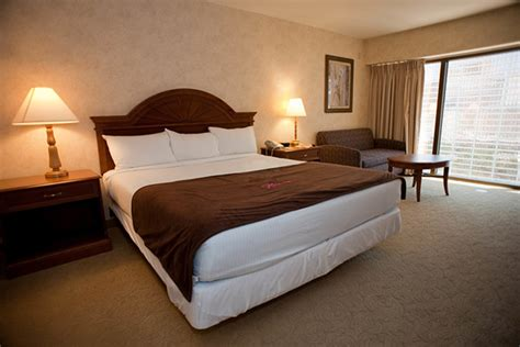 Las Vegas In Room by Las Vegas Vacations Flamingo Las Vegas Hotel And Casino