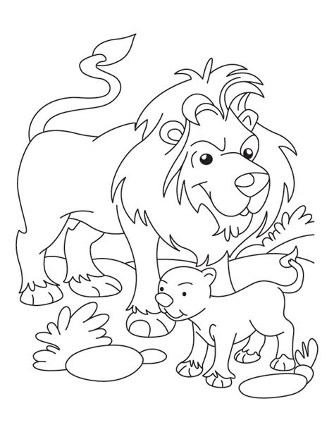 coloring page lion cub lion and cub coloring page