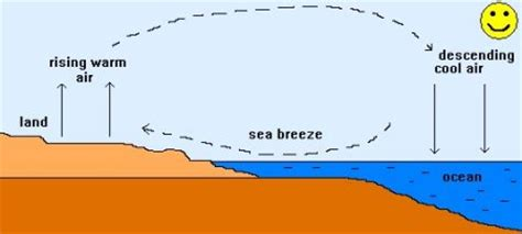 wind cycle diagram sea science